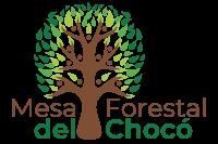 Mesa Forestal del Chocó